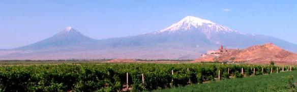 Viti nella Valle dell'Ararat - Foto di Nadia Pasqual